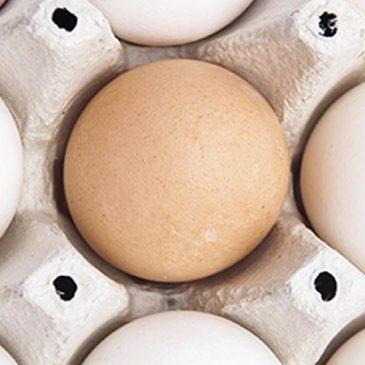Sanidad aconseja extremar las precauciones con alimentos a base de huevo para evitar salmonelosis